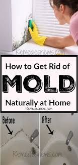 how to get rid of mold naturally at