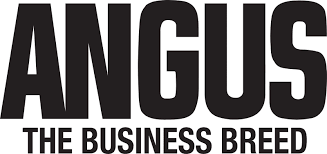 Image result for angus logo