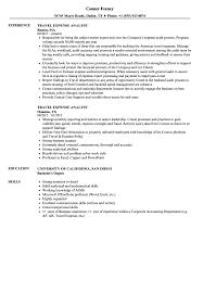 Travel Expense Analyst Resume Samples | Velvet Jobs