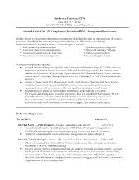 Internal Auditor Resume Objective Best of Night Auditor Job Auditor Resume Objective Internal Audit Manager