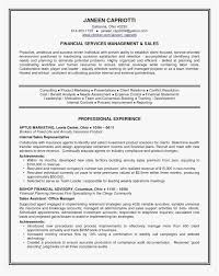 Free Printable Fill In The Blank Resume Templates Of 26 Rn Resume