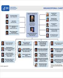 Cdc Organizational Chart 18 Organizational Chart Templates Free Sample Example