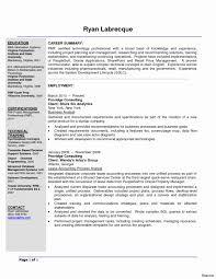 Travel Agent Resume Sample Travel Agent Resume Samples Unique Travel Agent Job Description 2