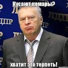 Жириновский дает рот тимошенко порно 131