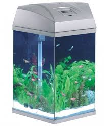 fish r fun hexagonal aquarium 216 litre silver office desk aquarium