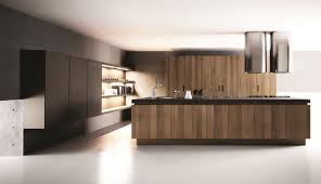 modern kitchen designs. Interior Design In Kitchen Ideas Modern Designs