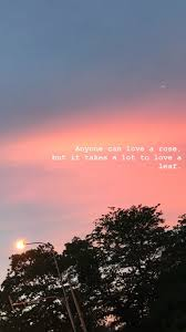 вaιley Lιvιngѕтon Quotes Sunset Quotes Wallpaper Quotes