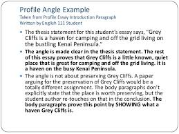 essay lecture profile angle example taken from profile essay