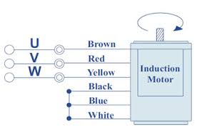 induction motor 25 watt induction motors manufacturer pune for the voltage 415 vac 3 phase supply wires are connected as shown in the fig short blue black and white and then insulate it carefully