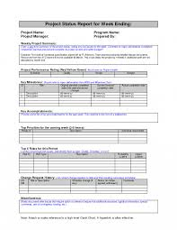 Weekly Project Status Report Sample Google Search Work Form Samples