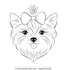 Yorkie Coloring Page Ccdckyorg