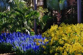 Longwood gardens is a 5.8 kilometer moderately trafficked loop trail located near kennett square, pennsylvania that features beautiful wild flowers and is good for all skill levels. St Valentine S Day At Longwood Gardens Mckeon S Garden