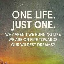 Quotes About Dreams Best Of Inspirational Quotes About Dreams 'One Life Just One' Towards Dreams