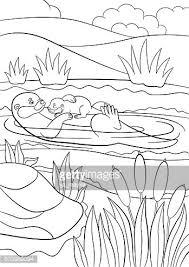 Moeder Otter Zwemt Met Haar Premium Clipart Clipartlogocom
