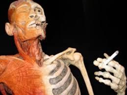 Вред курения какой вред наносит курение организму человека Вред курения на организм человека