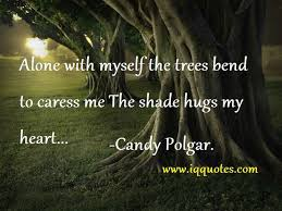 Tree Quotes Inspiration Tree Quotes Nature And Tree Quotes Tree Quotations
