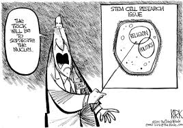argumentative essay on stem cell research stem cell research for the benefit of today and tomorrow