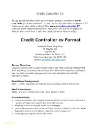 Sample Easy Resume Or Od Specialist Sample Resume Executive Security