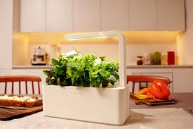 Lemon Decorations For Kitchen This Smart Herb Garden Lets You Click Grow Freshomecom