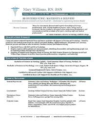 Nursin Resume Resume Template For Nurses Director Of Nursing Resumes Staff