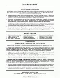 Resume Sample For Human Resource Position Useful Cv For Human Resource Position Hr Manager Resume Summary 60 23