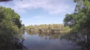 Myakka River Tide Chart Lets Go Flying Episode 2 Myakka River Florida