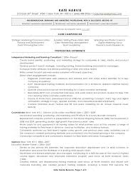 Sample Security Consultant Resume It Security Consultant Resume Sample How To Make A Resume