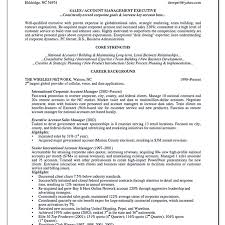 Sales Director Resume Sample Account Management Resume Innovation Design Account Manager Resume ...