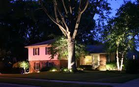 landscape lighting trees. Modren Trees To Landscape Lighting Trees