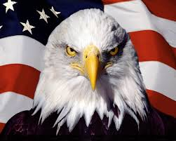 Patriotic/Eagles - Lessons - Tes Teach