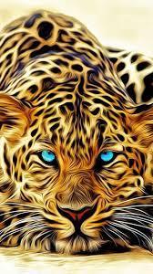 3d HD Tiger Wallpapers - Wallpaper Cave