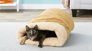 The Best <b>Heated Cat Beds</b> of 2020   Reviews & Guide