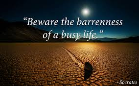 Witty Quotes Mesmerizing Busy Status And Funny Sayings About Busy Life