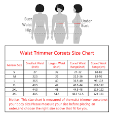 Waist Trimmer Belt Unisex Waist Trainer For Weight Loss For Men And Women Black From Clonew