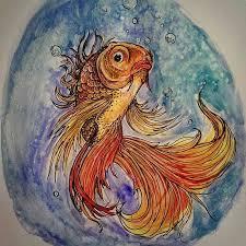striking watercolor drawings