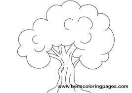 oak tree coloring picture