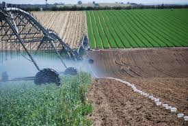 Irrigation Calculator Agriculture And Food