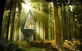 Pete Nelson Of Treehouse Masters On The Worldu0027s Coolest TreehousesCoolest Tree Houses