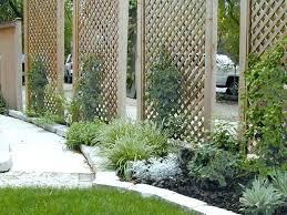 garden screen. Privacy Screens Outdoor Beautiful Garden Screen Ideas Wood Canada