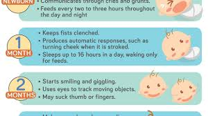 Developmental Milestones First Year Chart Know Your Babys First Year Milestones Infographic