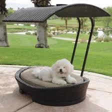 modern pet furniture. 20 modern pet beds design ideas for small dogs furniture