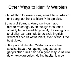 Warbler Identification Chart How To Identify Warblers Ppt Download