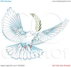 clipart of a white dove flying with an olive branch royalty free vector ilration by lal perera