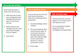 Adoption Birth Plan Template Disability Advocates And Workers Idrs