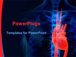 Heart Powerpoint Templates Cardiovascular Powerpoint Template Free Borders Ppt Heart
