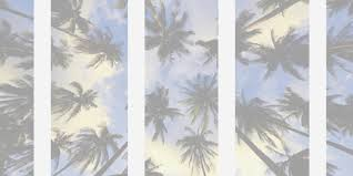 palm trees tumblr header. Palm Trees, Beach, And Header Image Trees Tumblr A