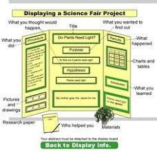 Science Fair Projects Layout Pin By Sara Johnson On Science Fair Project Ideas Science Fair