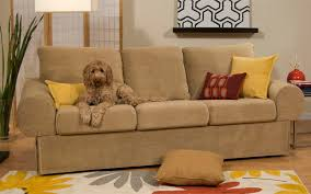 dog friendly furniture. light brown couch with throw pillows which is friendly for dog furniture