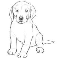 simple dog drawings in pencil. Contemporary Simple Dog Drawings In Pencil Easy For Kids Sketch Coloring Page And Simple Pinterest