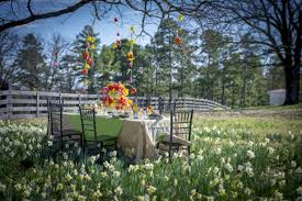 p allen smith uses tulips for easter decoration stargazer barn